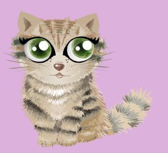 Eine Katze von der Rasse shiny maine-coon-katze aufnehmen