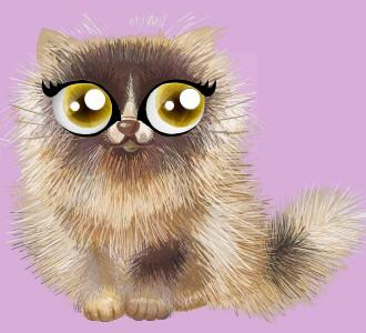 Eine Katze von der Rasse shiny perserkatze aufnehmen